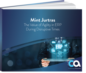 Whitepaper-Mint Jurtas Value of Agility