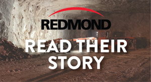 Redmond Inc Case Study