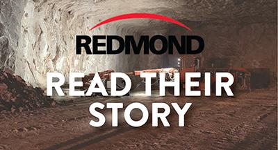 Redmond Inc Case Study